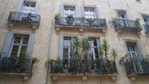 C'est beau Montpellier :)